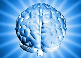 13 perguntas sobre o cérebro que a ciência já respondeu.