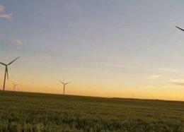 Futuro verde: energia eólica já é mais barata do que combustíveis fósseis.