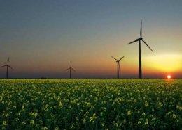 Google diz que funcionará totalmente com energia renovável em 2017.
