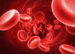 Já é possível produzir sangue artificial em larga escala.
