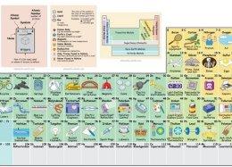 Que tal estudar a tabela periódica de um jeito mais divertido?