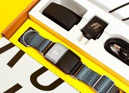 Conheça a coleira inteligente com GPS e bateria que dura três meses.