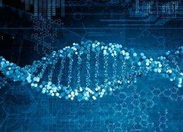 Cientistas são autorizados a editar embriões humanos fertilizados pela 1ª vez