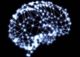 Cientistas podem ter encontrado o algoritmo da inteligência.