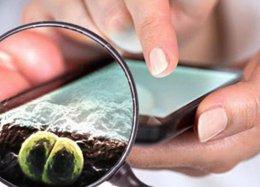 Seu celular provavelmente está sujo; saiba como limpar.