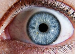 Olhar para telas o dia inteiro pode danificar células da retina