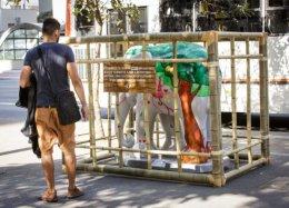 Elefantes da Elephant Parade amanhecem enjaulados em São Paulo