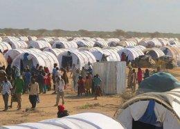Facebook quer ajudar refugiados oferecendo internet.
