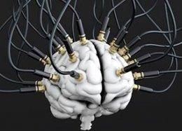 Neuralink: Elon Musk vai unir o cérebro humano com computadores.