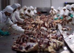 Empresa dos EUA promete lançar carne artificial em 2018.