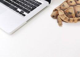 Pesquisa confirma: Internet lenta aumenta o nível de stress